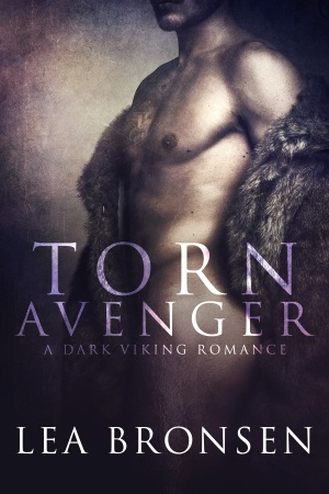 Torn Avenger_ebook cover 300x450