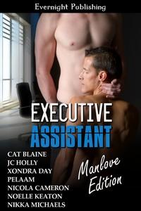 executive-assistant-manlove21s