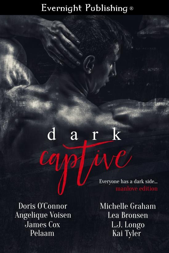 Dark-Captive2-Evernightpubishing-Jayaheer2016-finalimage