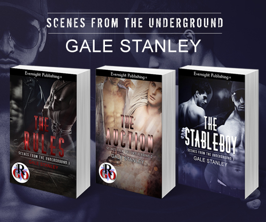 The-Stableboy-evernightpublishing-JayAheer2016-evernightbanner-series