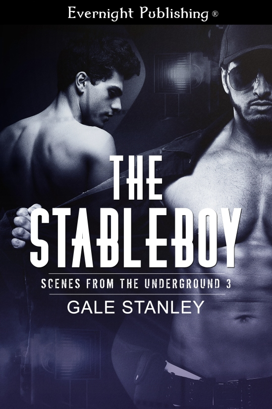 The-Stableboy-evernightpublishing-JayAheer2016-finalimage