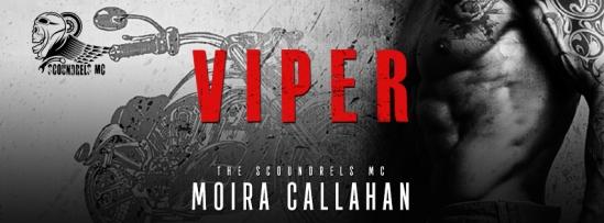 VIPER-banner1