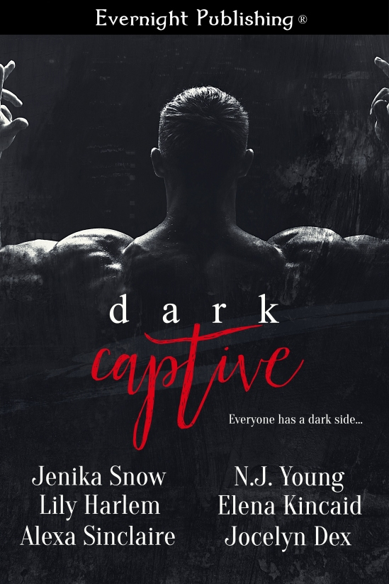 Dark-Captive1-Evernightpubishing-Jayaheer2016.jpg
