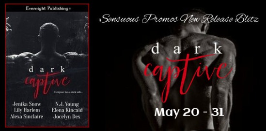 Evernight Publishing Dark Captive 1
