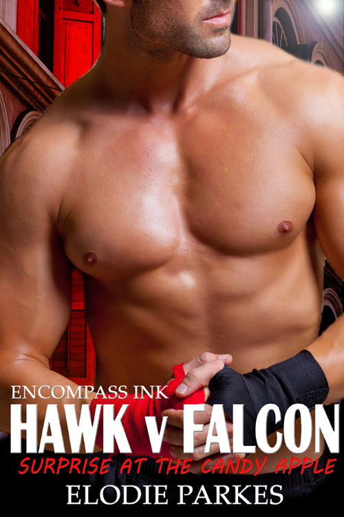 HawkvFalconCCT.jpg
