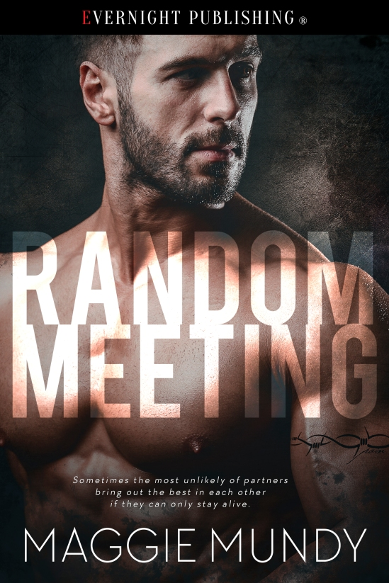 randommeeting-efvernightpublishing-dec2016