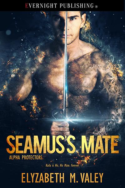 Seamus-Mate-evernightpublishing-2017-smallpreview.jpg