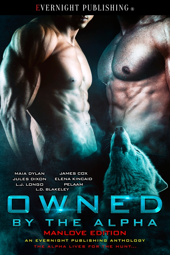 Owned-by-the-Alpha-Antho2-EvernightPublishing2017-MM-eBook-complete.jpg