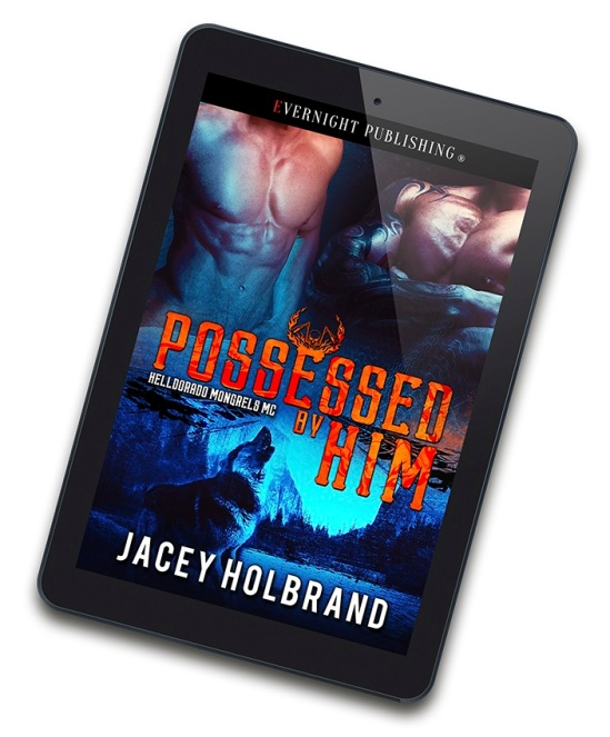 Possessed-by-Him-3D-eReader.jpg