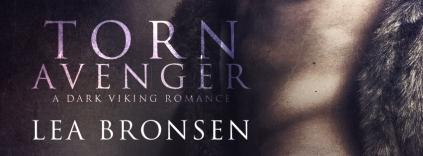 Torn Avenger_banner