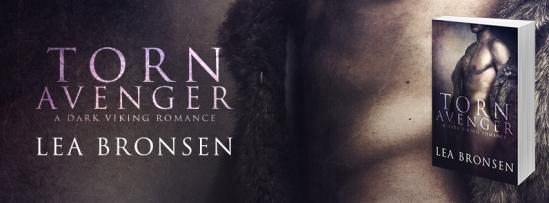Torn Avenger_banner2