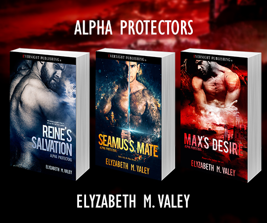 Maxs-Desire-evernightpublishing2018-series-evernightbanner.jpg