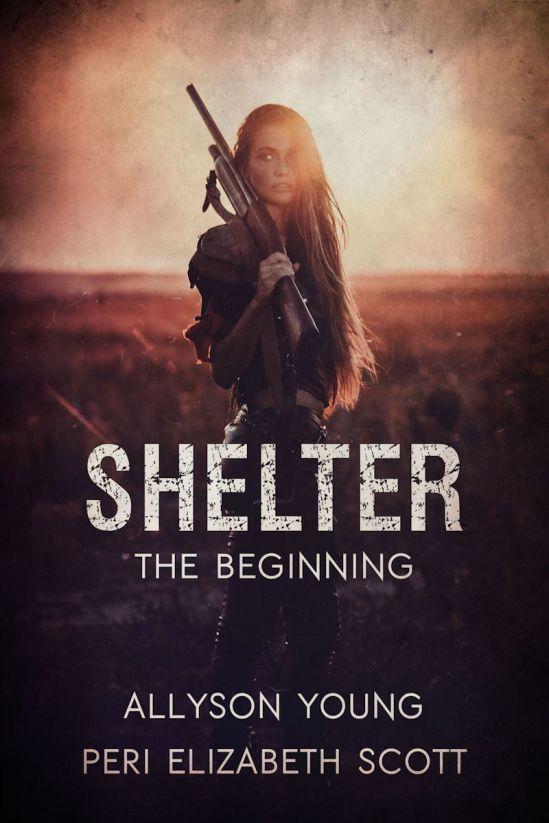 Shelter_TheBeginning_LRG.jpg